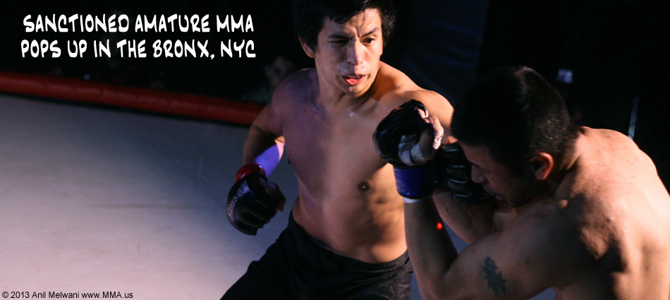Sanctioned Amature MMA Resurfaces in NYC | New York MMA