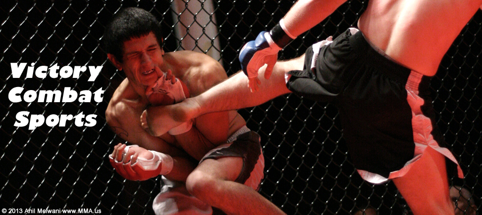 victory-combat-sports-mma