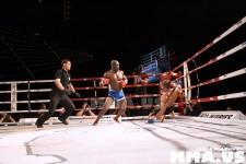 victory-combat-sports-vii-madison-square-garden-381